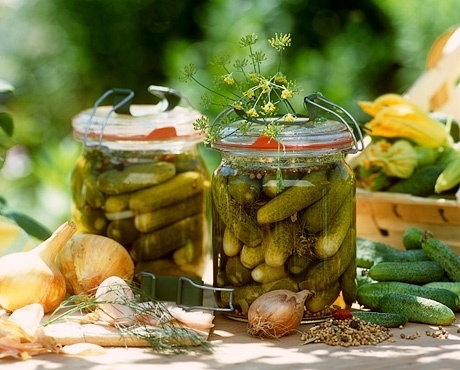Малосольные огурцы - рецепты: Как быстро приготовить 84