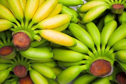 Кому помогла банановая диета