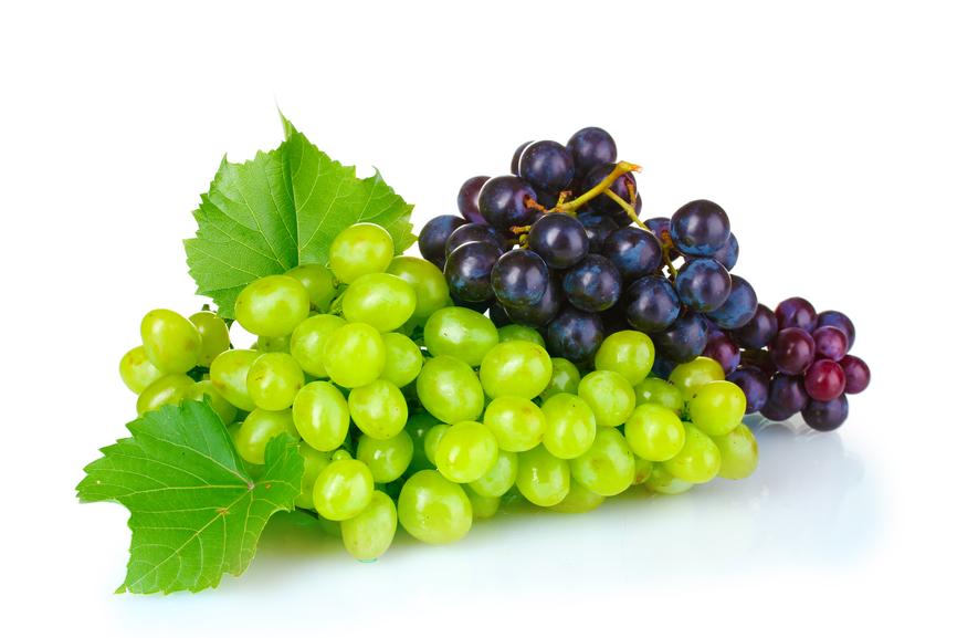 В Санкт-Петербурге выявлено более 34 тонн индийского винограда, прибывшего с нарушением фитосанитарных требований