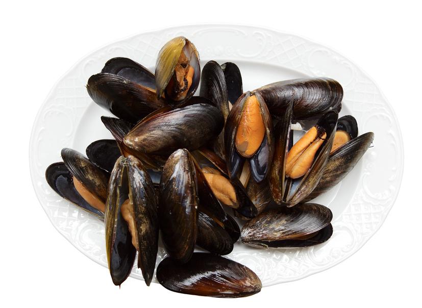 В Севастополе планируют нарастить производство товарной рыбы и моллюсков на 40%