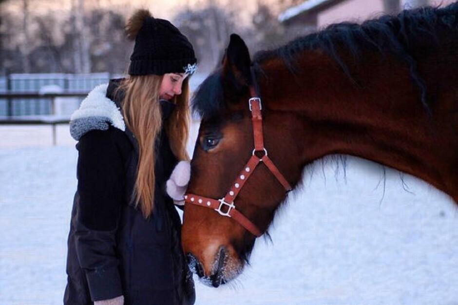 Девочка с конем секс