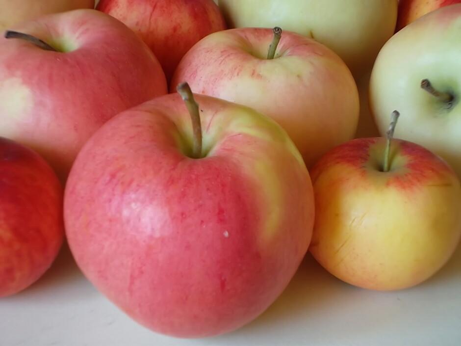 В каких продуктах содержится витамины группы b | food and health.