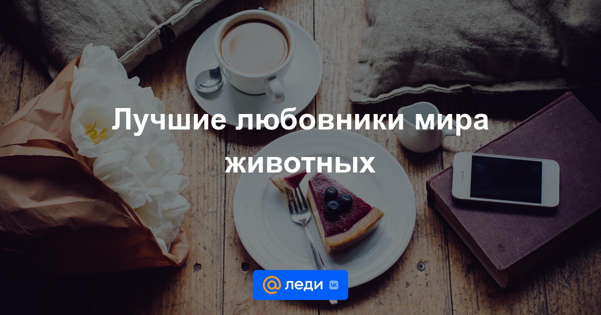 зубной имплант, стоит ли заниматься кофе аппаратами в москые цены
